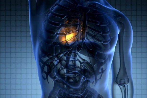 הפקת סרטי תלת מימד והדמיות לתחום הרפואה